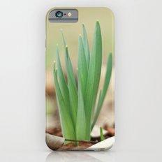 Daffidil iPhone 6s Slim Case