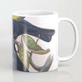 Rawnsley's Bowerbird, bird in the nature of Australia Coffee Mug
