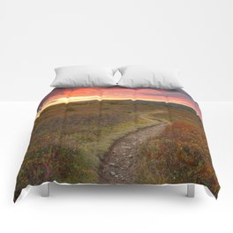 Dolly Sods Twilight Trail Comforters
