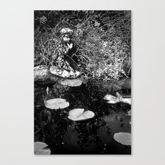 Butterfly Pond Canvas Print