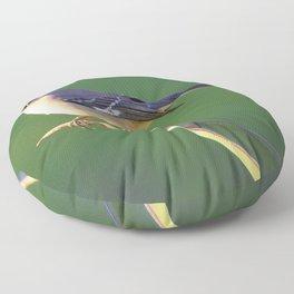 Desert Mockingbird by Reay of Light Photography Floor Pillow