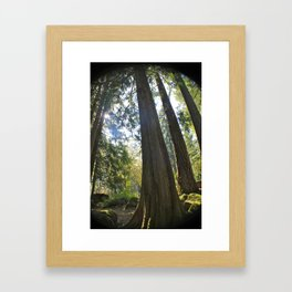 Tree Tree Tree Framed Art Print