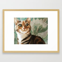 Moxie Cat Framed Art Print