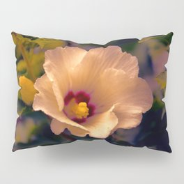 Sunset Cinnamon Rose Pillow Sham