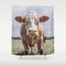 Animal Photography | Highland Cow Portrait Photography | Farm animals Shower Curtain