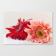 Spring simplicity Canvas Print
