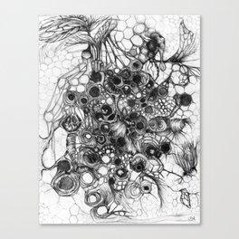 Honeycomb - sketch Canvas Print