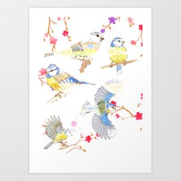Bluetits Art Print