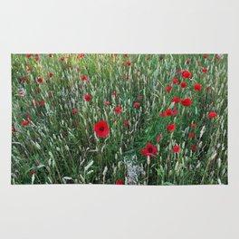 Poppy field, Summer greetings Rug
