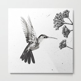 Humming Bird & Flower Metal Print