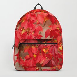 Vitaceae ivy wall abstract Backpack