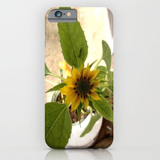 Flower Spider iPhone & iPod Case