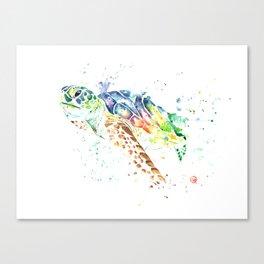 Turtle - Snap Canvas Print