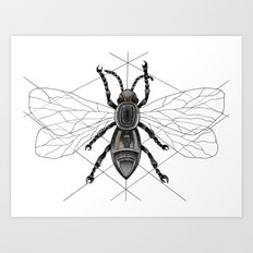 insect Art Print