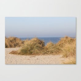 Wild Landscapes at the coast 6 Canvas Print