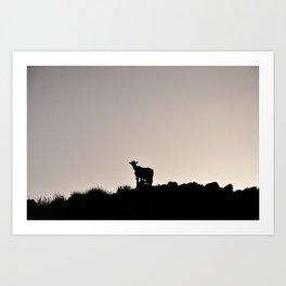 The Goat of Chania Art Print