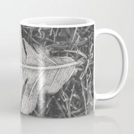 Frosted Oak Coffee Mug