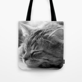 Sleeping cat, cat photography, black & white. Tote Bag