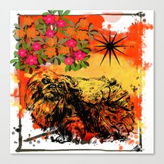 Pekingese pop art Canvas Print