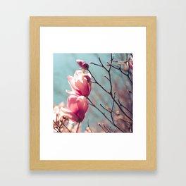japanese magnolia Framed Art Print
