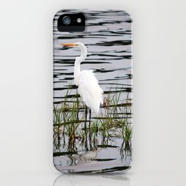 Egret Patiently Waiting iPhone Case