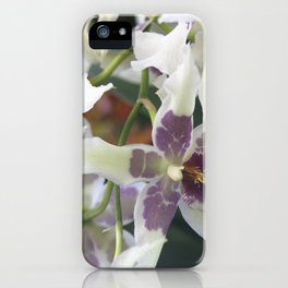 Longwood Gardens Orchid Extravaganza 75 iPhone Case
