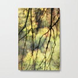 Weeping trees Metal Print