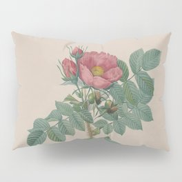 Rosa JP Redoute Pillow Sham