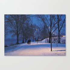 Falling into winter Canvas Print