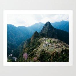 Flowers Before Machu Picchu Art Print