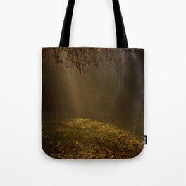 Sunbeams shining through Trees Tote Bag