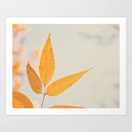 Autumn Three Art Print