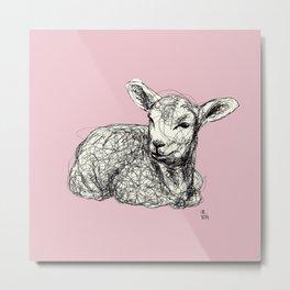Baby Animals - Lamb (Pink) Metal Print