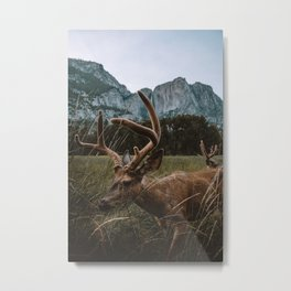 getting to know the  locals Metal Print