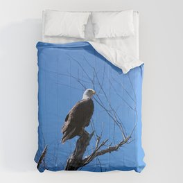 Clear Sight (Bald Eagle) Comforters