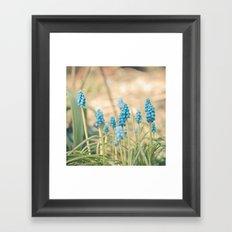 Forest of Blue Framed Art Print