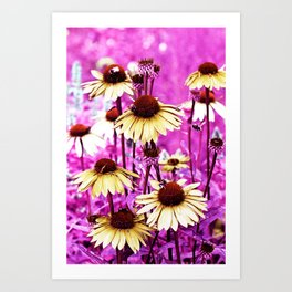 Flowers 72 Art Print
