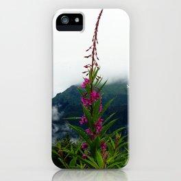 Juneau 1 iPhone Case