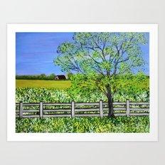 Spring Medow  Art Print