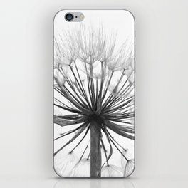 Black and White Dandelion iPhone Skin
