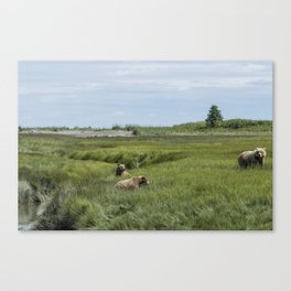 A Mother and Her Two Cubs, No. 1 Canvas Print