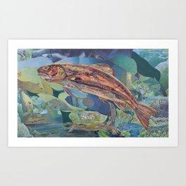 Brown Trout Art Collage by C.E. White Art Print