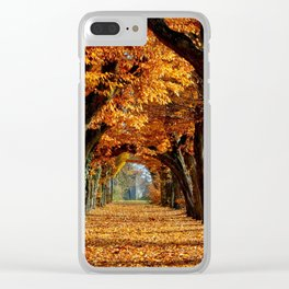 autumn Park Clear iPhone Case