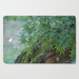 Japan Summer Maple Cutting Board