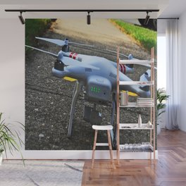 Take Me To Your Leader Wall Mural