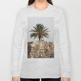 Megiddo ruins with Date Palm Tree Long Sleeve T-shirt