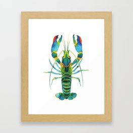 Red Claw Crayfish Lobster Framed Art Print