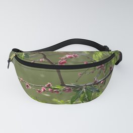 Spring - new beginning Fanny Pack