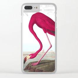 Flamingo Vintage Scientific Bird Illustration Clear iPhone Case