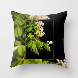 blooming Aesculus tree on black Throw Pillow